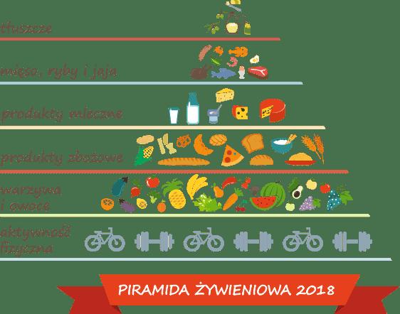 Właściwości i skład - Piramida żywienia